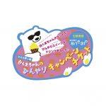 shirokuma_ticket_0719ol_nouhin